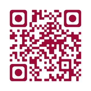 QRCOde Accordeon-occasion
